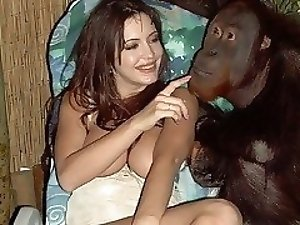 animal Cum gargling zoo